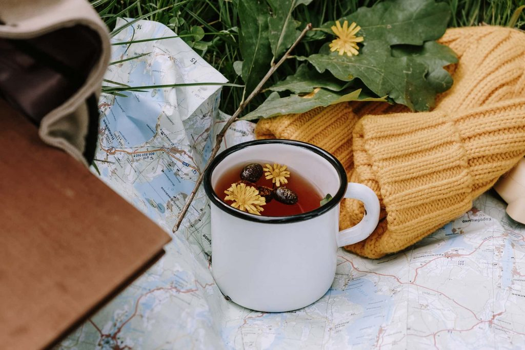 Tea with dandelions and herbs outside